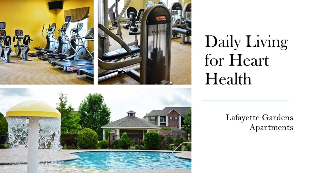 Image of the 2 fitness centers and swimming pool at Lafafayette Gardens Apartments - apartments in lafyette louisiana